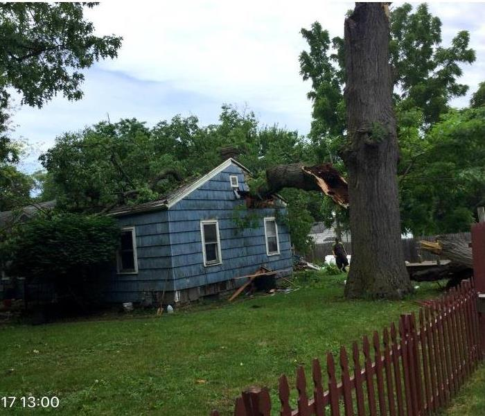 Tree Damage in South Bend Before